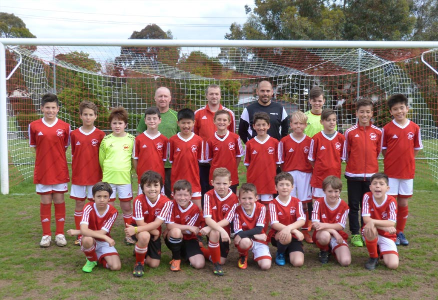 Soccer Clubs in Melbourne Eastern Lions