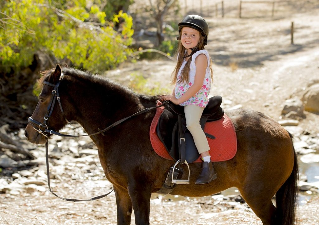 How Kids Can Learn Horse Riding In Adelaide Positive Benefits